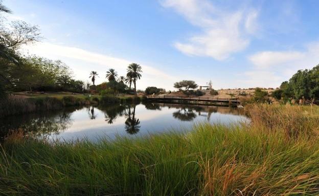פארק ספיר (צילום: גלעד ליבני)