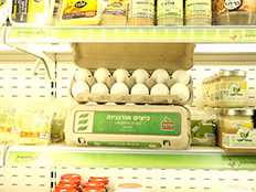 ביצים יקרות יותר - בריאות יותר? (צילום: החדשות)