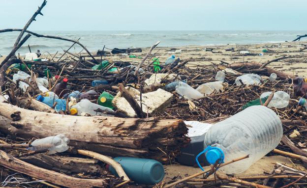 פסולת בחוף הים (צילום: Larina Marina, ShutterStock)