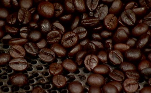 כך מסייע הקפה לשריפת אנרגיה (צילום: חדשות 2)
