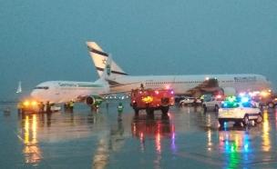 זירת התאונה (צילום: רשות שדות התעופה, חדשות)