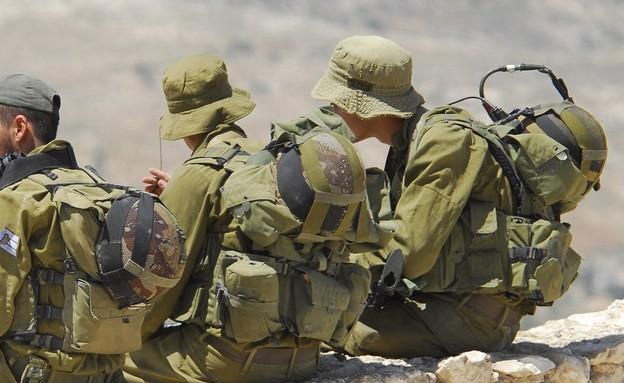חייל בודד (צילום: VojtechVlk, shutterstock)
