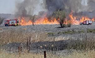 שרפה בקיבוץ אור הנר, היום (צילום: חדשות 24/7 בפייסבוק)