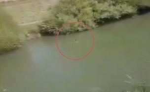 חשודים יורים על מתרחצים בנהר הירדן ושורפים רכב (צילום: חדשות)