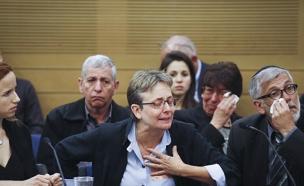 לאה גולדין בדיון בכנסת (ארכיון) (צילום: פלאש 90 \ Hadas Parush, חדשות)