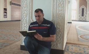 התגובות לריאיון בעזה, בגדה ובעולם הערבי (צילום: החדשות)
