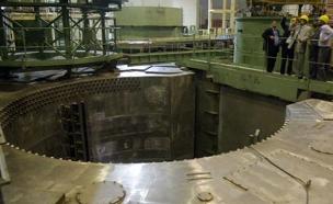 הכור הגרעיני בבושהר (צילום: רויטרס, חדשות)