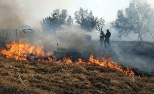 שרפה בעוטף כתוצאה מבלון. ארכיון (צילום: יענקלה גרוספלד, חדשות)