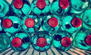 לשתות בין 8 ל-10 כוסות (צילום: חדשות 2)