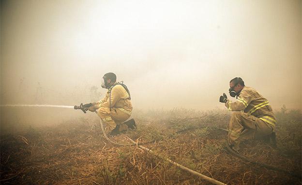 גל שריפות (צילום: פלאש 90, נועם רבקין, חדשות)
