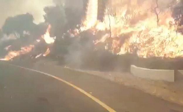 שרפה במושב אדרת (צילום: אושרי בן דוד, חדשות)