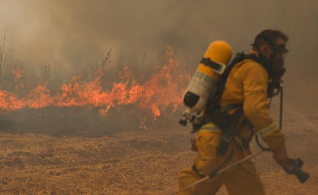 השריפה באזור בית שמש (צילום: Noam Revkin Fenton/Flash90, חדשות)