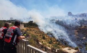 השרפה הקודמת בוואדי ליפתא (ארכיון) (צילום: אהוד אמיתון/TPS, חדשות)