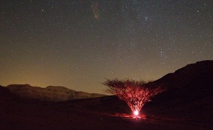 ליל המטאורים - פארק תמנע (צילום: חגית גל)