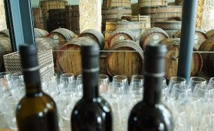 יין אדום - פתרון לאסטרונאוטים (צילום: מנדי הכטמן / פלאש ן90, חדשות)