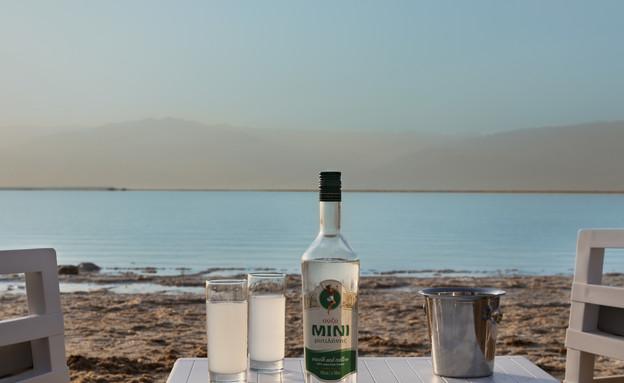 מילוס ים המלח (צילום: אסף פינצוק)