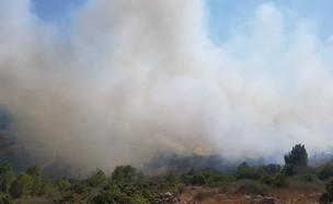 שרפה בהרי ירושלים סמוך לבית מאיר (צילום: כבאות והצלה ירושלים, דוברות כבאות והצלה)
