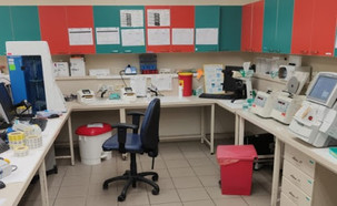 שביתה במעבדות הרפואיות ברחבי הארץ (צילום: אגף הדוברות בהסתדרות)