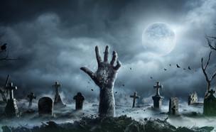 בית קברות  (צילום: By Dafna A.meron, shutterstock)