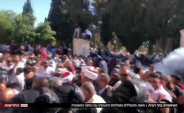 20har_habayit_vtr2_n20190811_v1 (צילום: חדשות)
