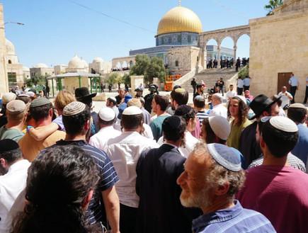 יהודים עולים להר הבית בתשעה באב