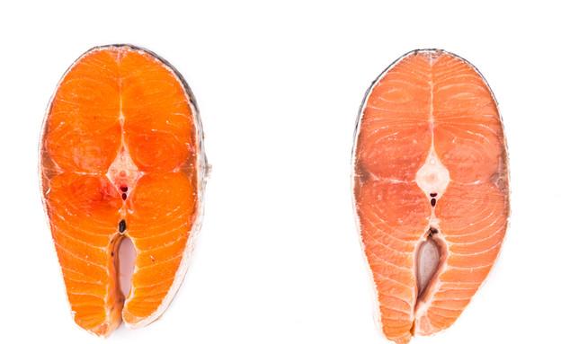 הבדלים בין סוגי סלמון (צילום: ThamKC, shutterstock)