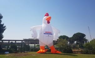 התרנגולת הענקית שהוצבה בכניסה לכנסת