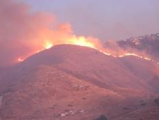 תיעוד: שרפת ענק ברמת הגולן