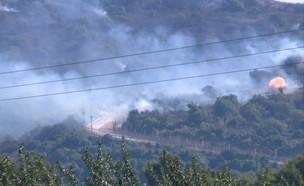 שרפה ברכס נפתלי, גבול לבנון (צילום: שלומי אפריאט, החדשות 12)
