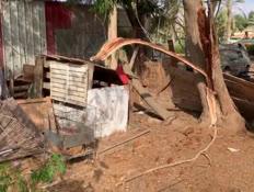עץ קרס בחצר בית בדרום ופצע בן 55 במצב בינוני