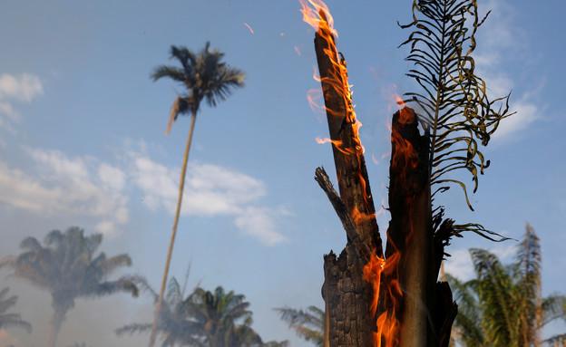 שרפות הענק של יערות הגשם בברזיל (צילום: רויטרס)