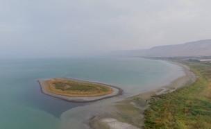 האי בכינרת חוזר להתרחב (צילום: יובל גסר)
