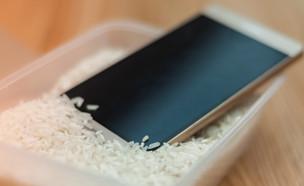 סמארטפון בתוך אורז (צילום:  Veronika Pfeiffer, 123rf)