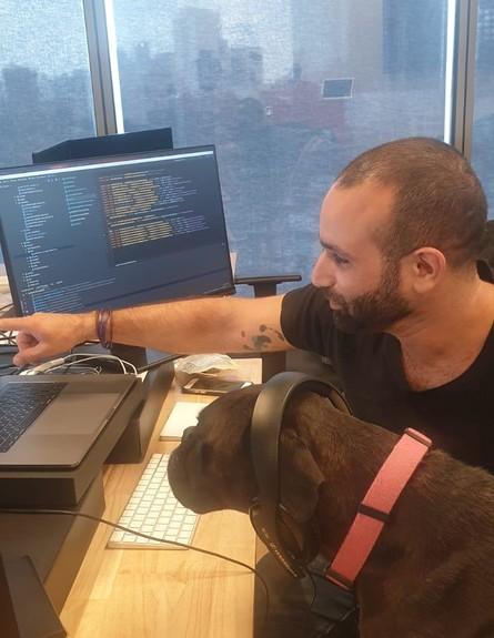 הכלבים שבאים עם הבעלים לעבודה