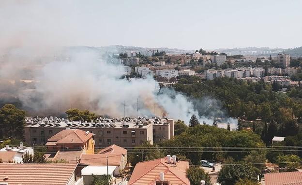 שרפת החורש בבית שמש (צילום: חנן כהן )