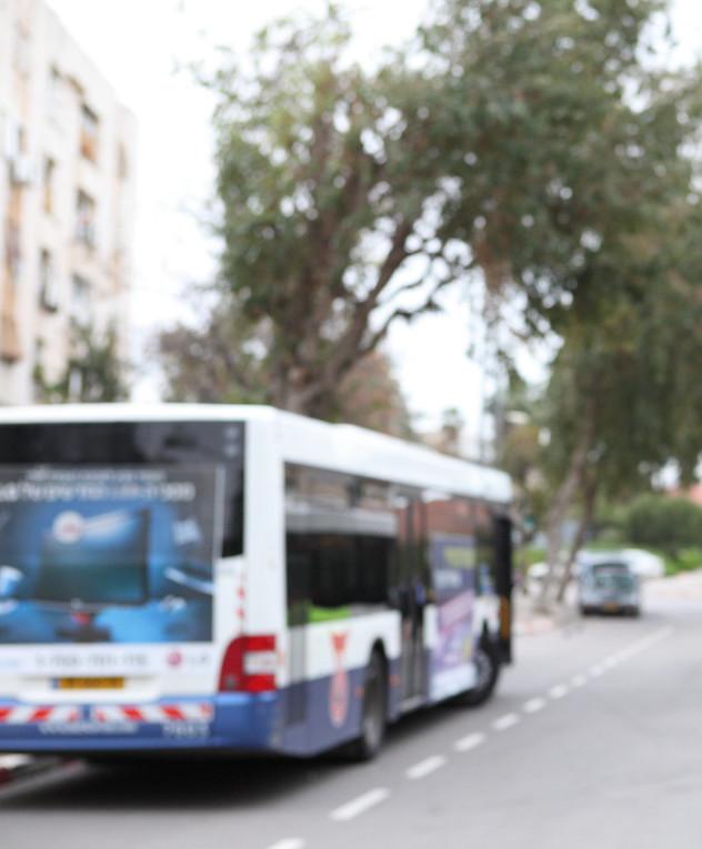 תחבורה ציבורית, אוטובוסים, דן