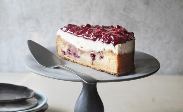 מיקי שמו - עוגת גבינה בחושה עם פירות אדומים (צילום: דניאל לילה , יחסי ציבור)