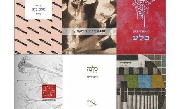 ראש השנה עד 50 שקל, ספרי שירה, 49.90 שקל, מקום לשירה (צילום: סטודיו דג הזהב)
