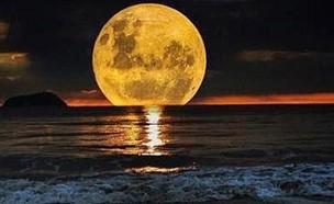 ירח מלא (צילום: InterestingFol1, twitter)