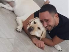 רמלה: איום בקנס על עיוור - כי לא ניקה אחרי כלב