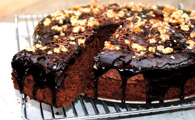 עוגת שוקולד עשירה (צילום: פסקל פרץ-רובין, האתר הקולינרי של פסקל)
