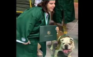 מה שהכלב הזה עשה שניה אחרי - היה בלתי נסלח (צילום: צילום מסך מתור חשבון הפייסבוק: Enrique Ruiz Almodóvar)
