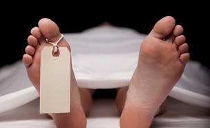 מוות (צילום: shutterstock, Nadezda Barkova)