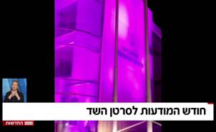 20cancer_shad_vtr2_n20190924_v1 (צילום: חדשות)