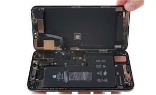 אייפון 11 מפורק (צילום: iFixit)