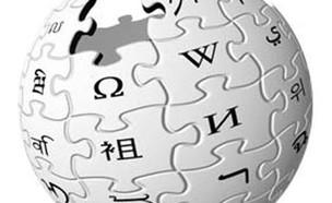 ויקיפדיה (צילום: ויקיפדיה)