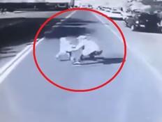 ניסה להציל את בנו מפגיעת רכב - ונדרס למוות