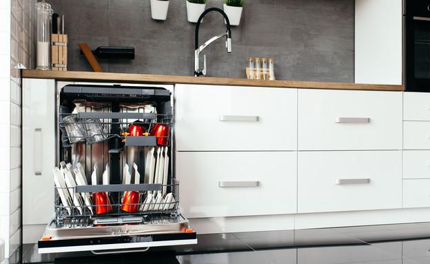 מטבח עם מדיח כלים (צילום:  hedgehog94, shutterstock)