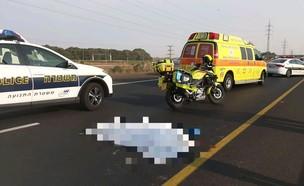 """צעיר בן 25 נהרג מפגיעת רכב בכביש 20 (צילום: דוברות מד""""א, דוברות מד""""א )"""
