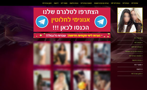 האתר שהפעילה הרשת לסחר בנשים וסרסורן לזנות (צילום: צילום מסך)